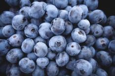 blueberries-690072